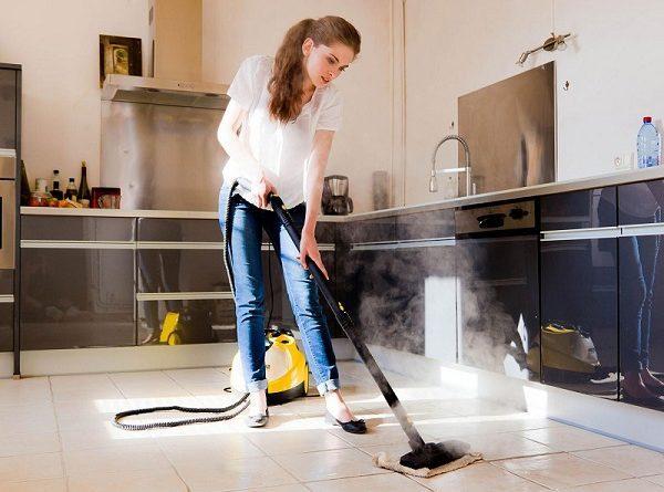 Quel Est Le Meilleur Nettoyeur Vapeur