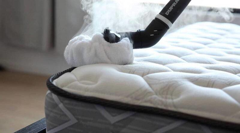 Nettoyeur vapeur punaise de lit